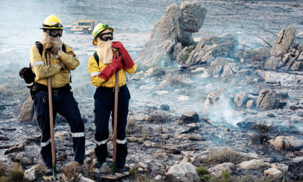Maties students and staff risk their lives to fight fires